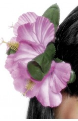 Clip Flores Hawaianas Rosas