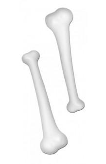 Kit 2 Huesos