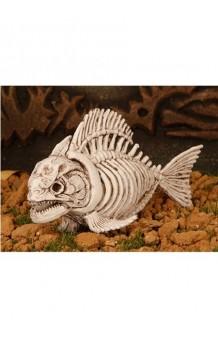 Esqueleto Piraña, 23 cm.