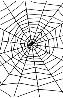 Telaraña Negra Gigante + Araña