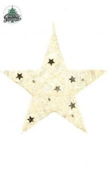 Estrella Blanca & Plata Colgante, 15 cm.