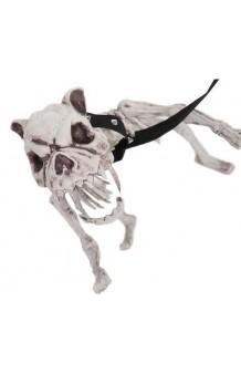 Perro Esqueleto, 60 cm.