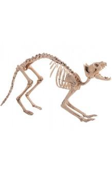 Gato Esqueleto, 60 cm.