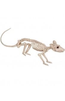 Esqueleto Rata, 41 cm.