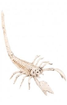 Escorpión Esqueleto, 30 cm.